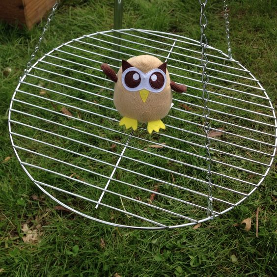 It's not a swing, Owly. Day 131 of #yearofowly #lifeofowly