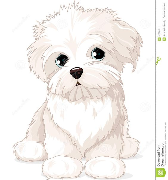 maltese dog clipart - photo #5