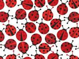 Ann Kelle Urban Zoologie, Ladybugs Red Fabric
