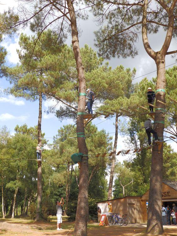 Accrobranche / Parcours d'escalad'arbres, dès l'age de 3ans et pour toute la famille. Tyrolienne géante