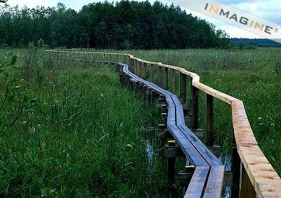 Finland, bridge through marshlands