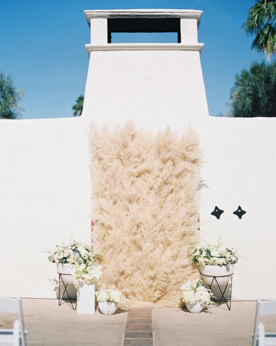 pampas grass ideas wall filled with grass