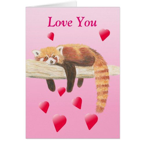 Red Panda Valentines Card Zazzle Com Valentines Cards Red Panda Holiday Design Card