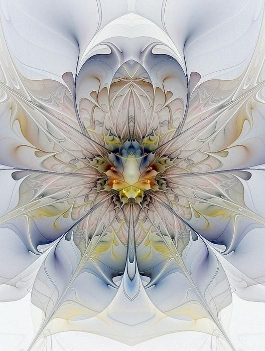 Mirrored Blossom by Amanda Moore: