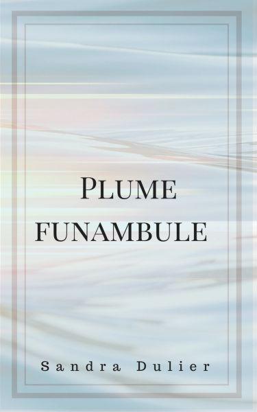Découvrir l'ebook gratuit et téléchargeable. Un livre sous forme de journal à suivre selon les humeurs d'écriture de son auteur, Sandra Dulier, plume funambule et poète.