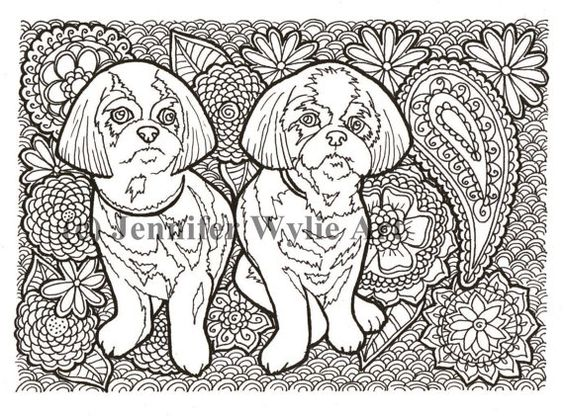 A F D F Ee A F A together with Border Collie Hot Pink Silhouette further Cockapoo additionally Stock Vector Coloring Book Page With Spaniel Head For Adults Ethnic Decorative Doodle Dog Vector Illustration additionally C D Cb F D C Bd. on spaniel coloring pages for adults