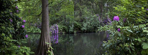 Promoción del Arte: Tiergarten - Romanticismo - primavera 1