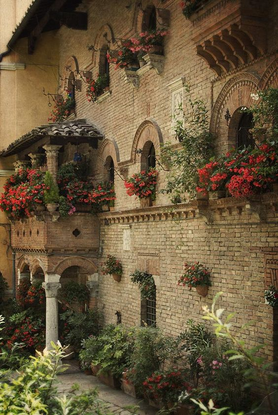 Perugia. Fiori e Palazzi
