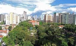 Contraste dos prédios e árvores:mangueiras, etc...