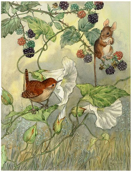 windypoplarsroom:    Molly Brett  reminds me of Beatrice Potter books