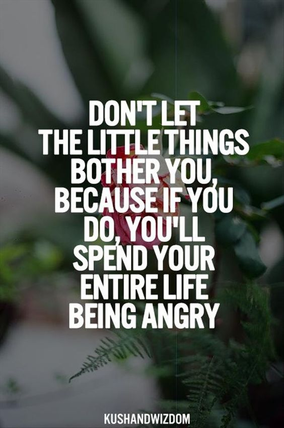 Quotes About Anger And Rage: Inspirational Quotes Of The Week – 35 Pics