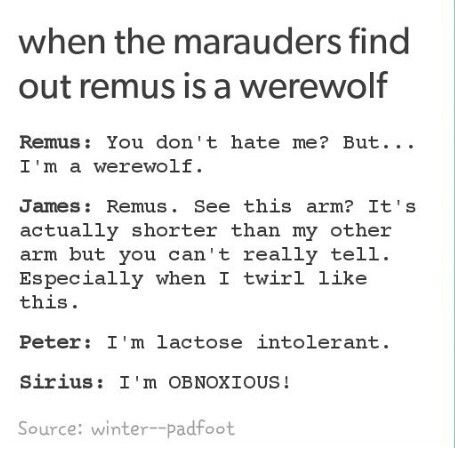 """I'm OBNOXIOUS!"" I love this so much. When the marauders find out Remus lupin is a werewolf"