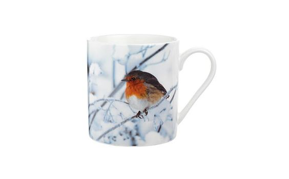 by Sainsbury's Robin Photographic Mug