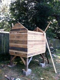 Chicken coops out of pallets