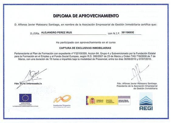 2010 AEGI Formación en Captura de Exclusivas Inmobiliarias Diploma Titulacion Reconocimiento Formativo de Alejandro Perez Irus AlejandroPI Medico Mentoring Agentes Inmobiliarios