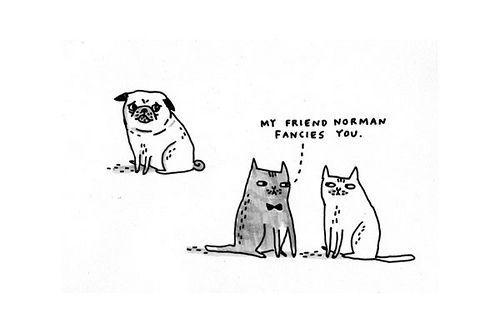 For Ofa: Pugs Norman, Kewl Stuffs, Love Kitties, Flickr Photo, Funny Stuff, Correll Pugs, Gemma Correll, I Love Pug