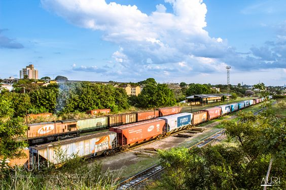 Trem by amauriam