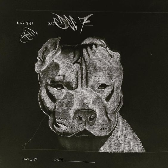 "Day 341: ""In the 70's they blamed Dobermans in the 80's they blamed German Shepard's in the 90's they blamed Rottweilers now they blame #pitbulls ... when will they blame the humans?"" #rednosepitbull #inverteddrawing #negativedrawing by farcefeed"