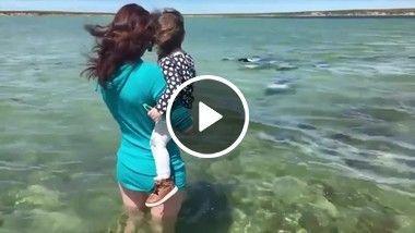 Peixes rodeando mulher.