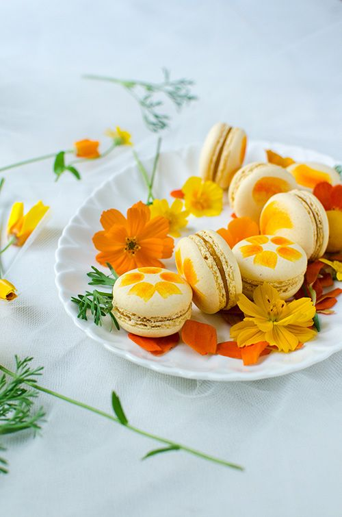 macarons with plum white chocolate filling