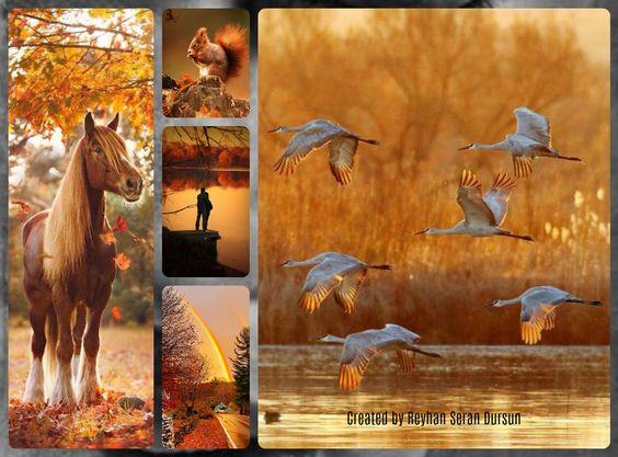 '' The last days of Autumn '' by Reyhan Seran Dursun: