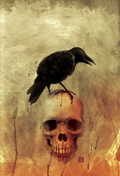 The Raven all #hallows eve better known as #halloween
