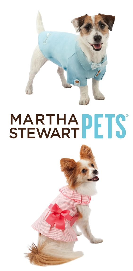 Seersucker, bows, and pastels - the #MarthaStewartPets line will have your pup looking #KentuckyDerby ready!