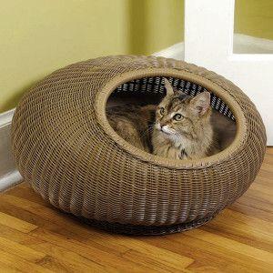 Mr. Herzher's Decorative Cat Pod - PetSmart