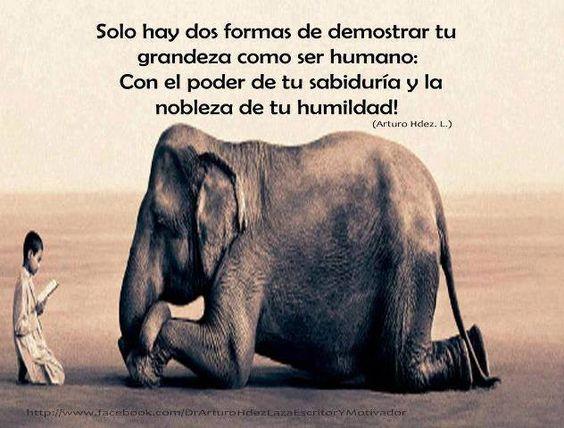 #Sabiduria #humildad