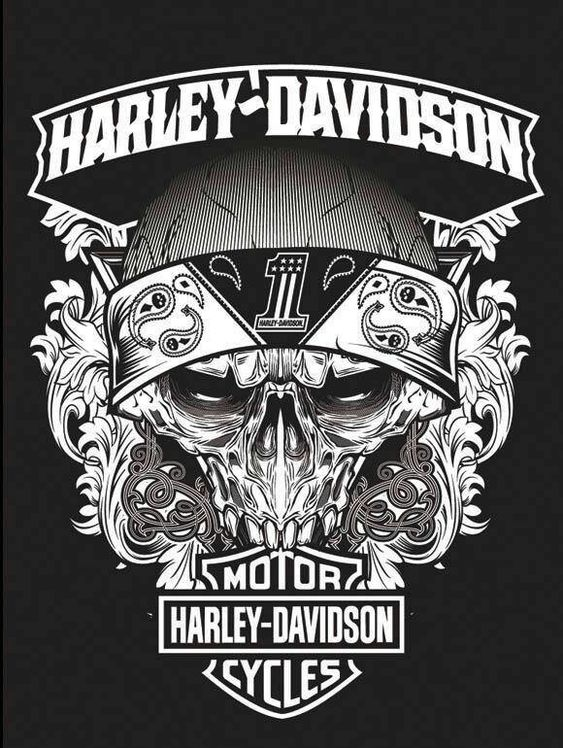 Harley Davidson MotorCycles Free Pinterest Perfection E