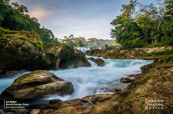 Ganadores del Primer Concurso Nacional de Fotografía de Naturaleza