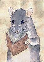 The Smart rat by Shizuku-Uzu