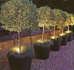 Landscaping Backyard Putting Green Garden Lighting Design Backyard Landscaping Outdoor Gardens