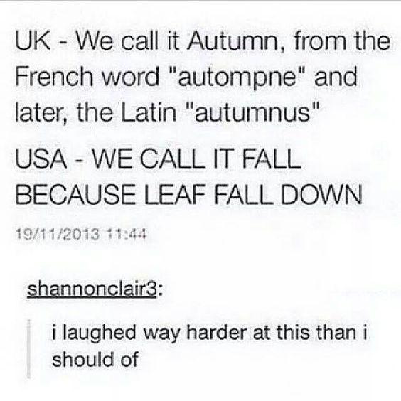 Laughed to hard. hahahaha....: