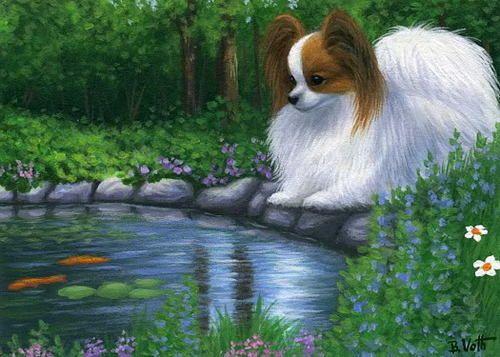 Papillon dog koi pond limited edition aceo print art art for Koi papillon