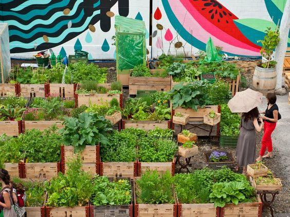 Frau Gerolds Garten Essen Trinken In Zurich Urban Garden Urban Farming Diy Garden