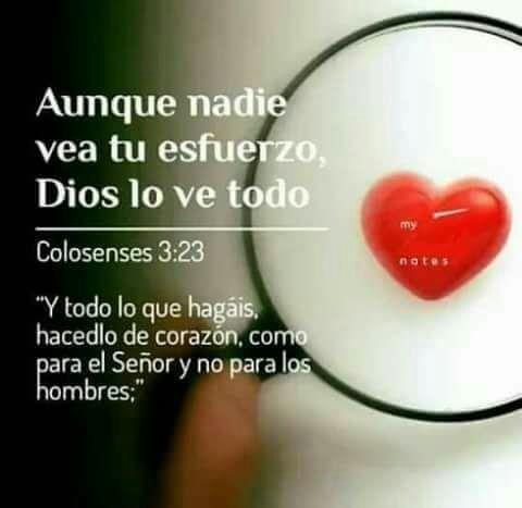 Devocional 11 01 2018 Aunque Nadie Vea Tu Esfuerzo Dios Lo Ve Todo Frases Del Amor De Dios Dios Frases Cristianas