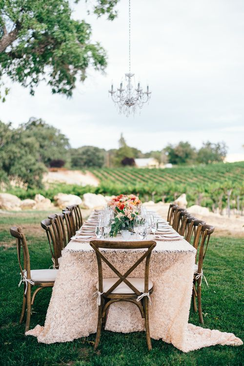 A table in the vineyard, blush linens and cross back chairs, crystal chandelier in the tree above