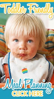 Toddler Friendly Food