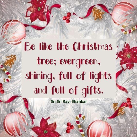 Christmas Quotes Be Like The Christmas Tree Christmas Merry Christmas Christma The Little Foc Christmas Tree Quotes Merry Christmas Quotes Christmas Words