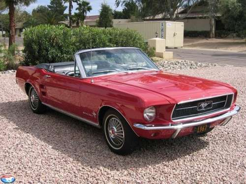 """Want one with a license plate """"Mustang Sally"""" :)"""
