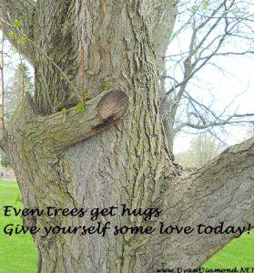 Tree Hugs