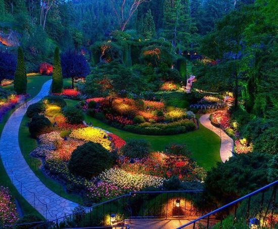 nighttime garden - Google Search