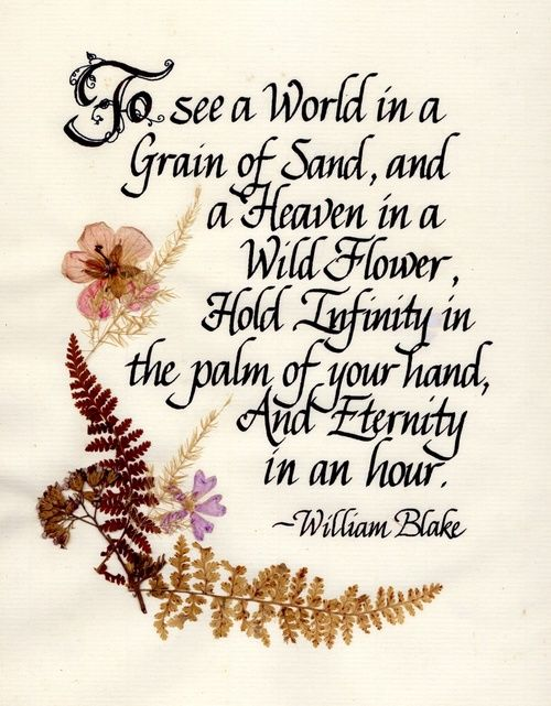 """""""To see a World in a Grain of Sand, and a Heaven in a Wild ..."""