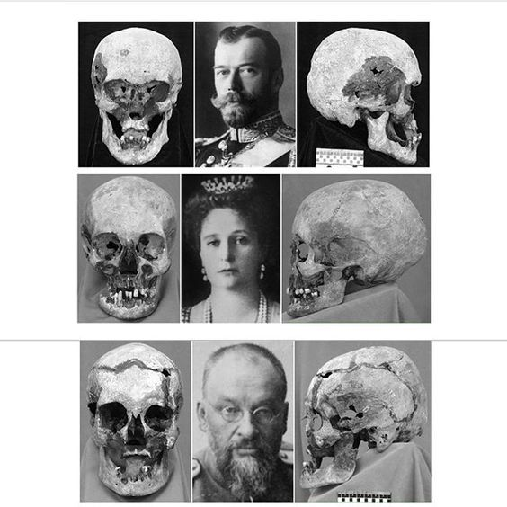 "Skulls of Tsar Nicholas II of Russia Empress Alexandra Feodorovna of Russia and Dr. Evgeniy Sergeyevich Botkin. ""AL"""