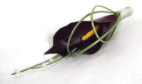 calla lily buttonholes - Google Search