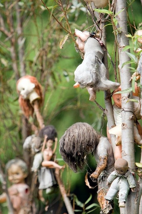 Island Of The Dolls In Mexico.... Totally A Real Place