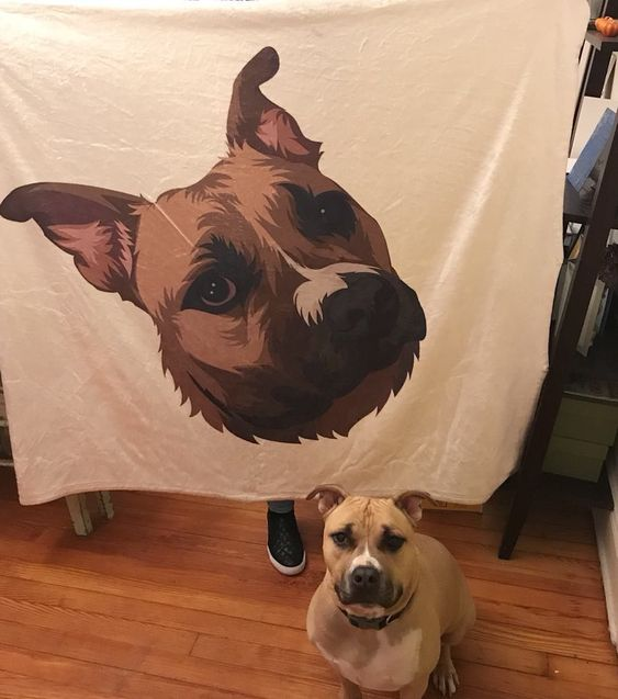 Get A Fleece Blanket From Printy Pets For Your Good Boy Or Girl