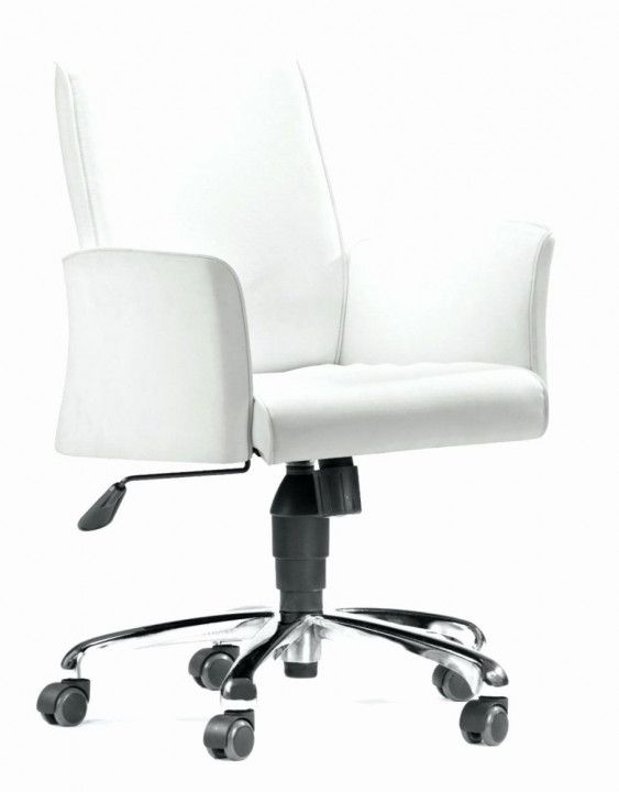 Swivel Desk Chair Without Wheels Organizing Ideas For Desk