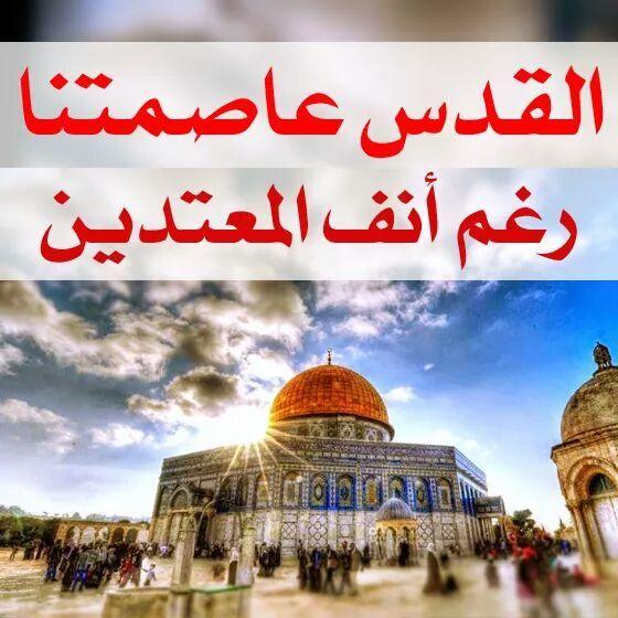 اغضب للقدس مهما قالوا مهما حدث ستظل القدس عاصمة فلسطين والاقصى في قلوبنا قبلة الريحان والياسمين